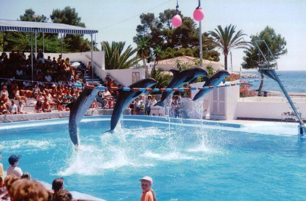 Marineland Mallorca!