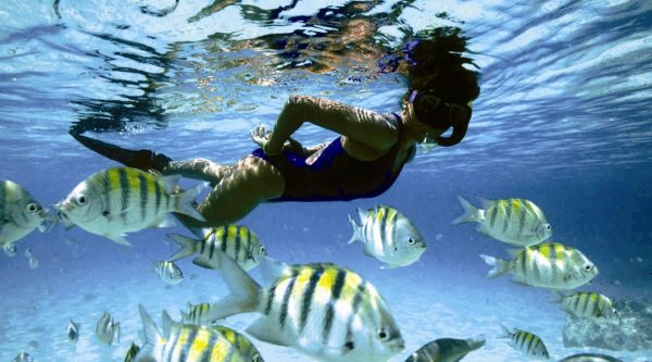 Snorkeling Mallorca